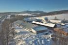 Zimní ustájení skotu v Mladých Bukách